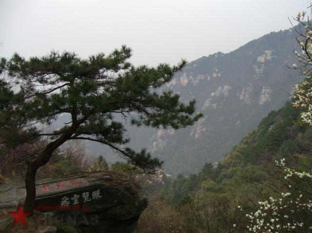 廬山の画像 p1_17