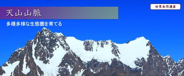新疆天山の画像 p1_2