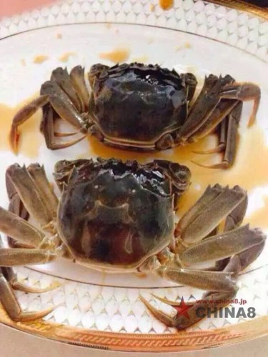 酔っ払い上海蟹