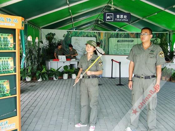 キャンプ基地的なゲート