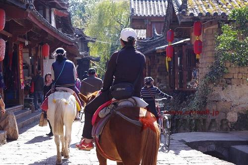乗馬で観光